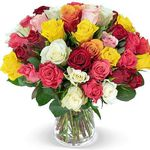 "40 bunte Rosen ""Crazy in love"" für 24,98€"