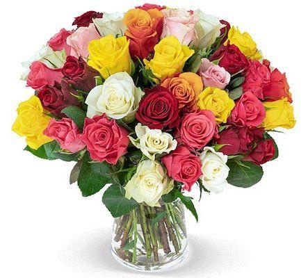 40 bunte Rosen Crazy in love für 24,98€