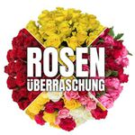 Rosenüberraschung mit 35 bunten Rosen mit 50cm für 22,98€