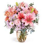 LIDL Blumen mit 20% Rabatt (MBW 19,95€) – selber vorbeibringen fällt ja flach!