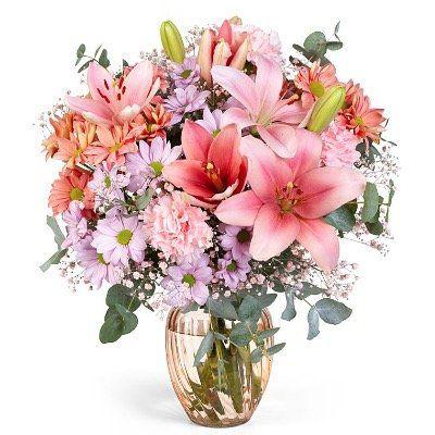 LIDL Blumen mit 20% Rabatt (MBW 19,95€)   selber vorbeibringen fällt ja flach!