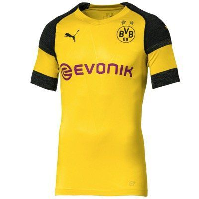 Borussia Dortmund Herren evoKNIT Authentic Heimtrikot 2018/19 für 25,98€ (statt 40€)