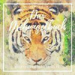 """""""Das Dschungelbuch"""" kostenlos als MP3 herunterladen"""
