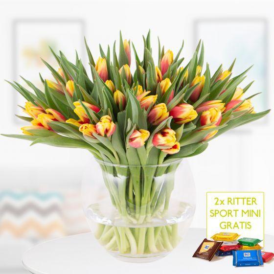 40 zweifarbige Tulpen (Rot Gelb) + 2 Ritter Sport Minis für 22,90€