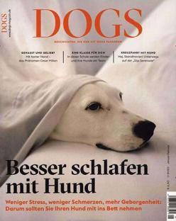DOGS Magazin für Hundebesitzer im Jahresabo für 39€ + 30€ Amazon Gutschein