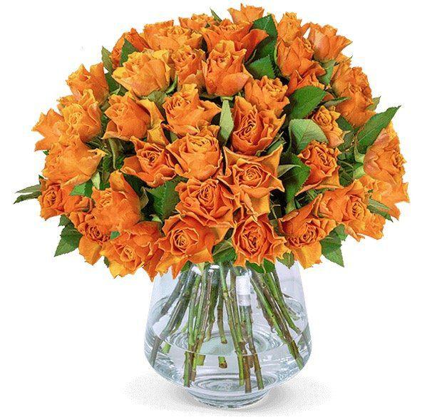 35 orangefarbene Rosen für 24,98€