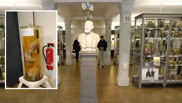 Freier Eintritt ins Medizinhistorische Museum Berlin vom 30.1. bis 2.2.