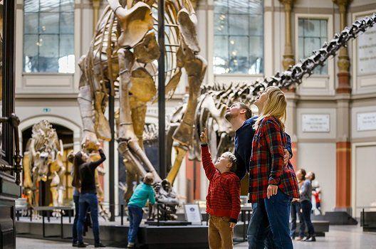 Kostenloser Eintritt in Berliner Museen