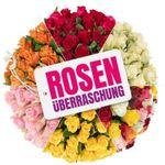 Rosenüberraschung mit 44 bunten Rosen mit 50cm Länge für 24,98€