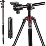Esddi TP-80 Kamerastativ (bis 190cm) mit 360° Kogelkopf für 64,99€ (statt 130€)