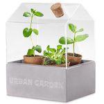 Tchibo Mini-Gewächshaus für Kräuter oder kleine Pflanzen für 14,30€ (statt 19€)