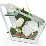 Ausverkauft! Glas-Windlicht mit Orchideen-Deko für 16,98€