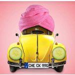 KFZ-Urlaubs-Check für 9,90€ (Bremsen, Fahrwerk, Batterie…) in der Vergölst Sommerkampagne