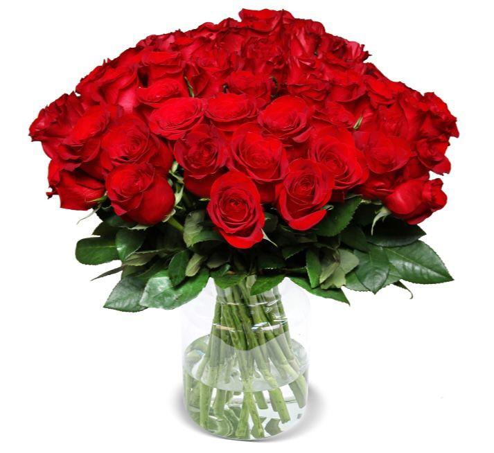 50 Rote Rosen in 50cm Länge nur 29,98€