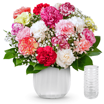 Nelkenstrauß Rainbow mit 12 bunten Nelken für 24,53€ + Gratis Vase
