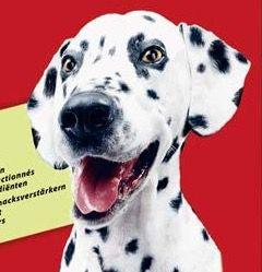 4 für 3 Haustier Artikel bei Amazon – z.B. 30kg Frolic Hunde-Trockenfutter für 47€ (statt 64€)