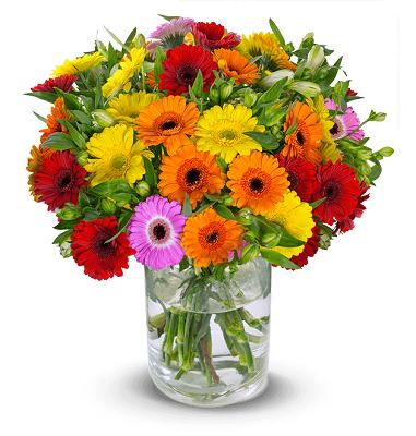 Blumenstrauß You Are The One mit 30 Stielen und über 150 Blüten für 24,98€