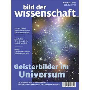 Bild der Wissenschaft Jahresabo Abo für 121,52€ + 100€ Verrechnungsscheck + 5€ Amazongutschein