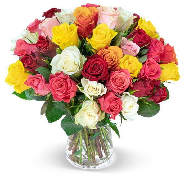 40 bunte Rosen Crazy in love für 25,98€