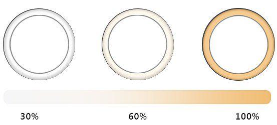 GOAMZ LED Ringlicht mit Stativ für 21,62€ (statt 31€)
