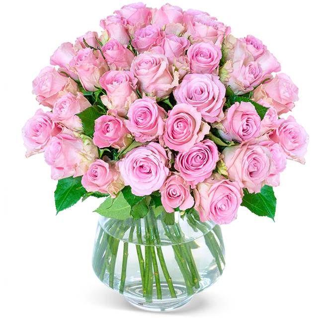 40 pinke Rosen im Strauß für 25,98€ (statt 40€)