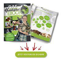 Kostenlos: Hundefibel von Doguniversity erhalten