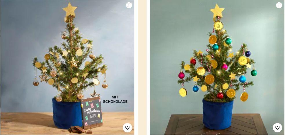 15€ Bloom & Wild Gutschein   z.B. Sternen Bäumchen inkl. Übertopf, Beleuchtung und Schmuck für 21€ (statt 36€)