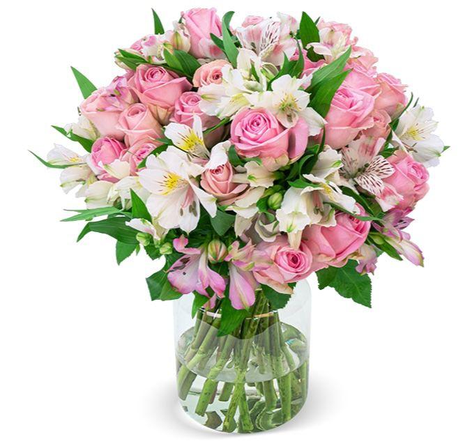 """33 Rosen """"Sweet Surprise"""" mit 120 Blüten für 25,98€"""