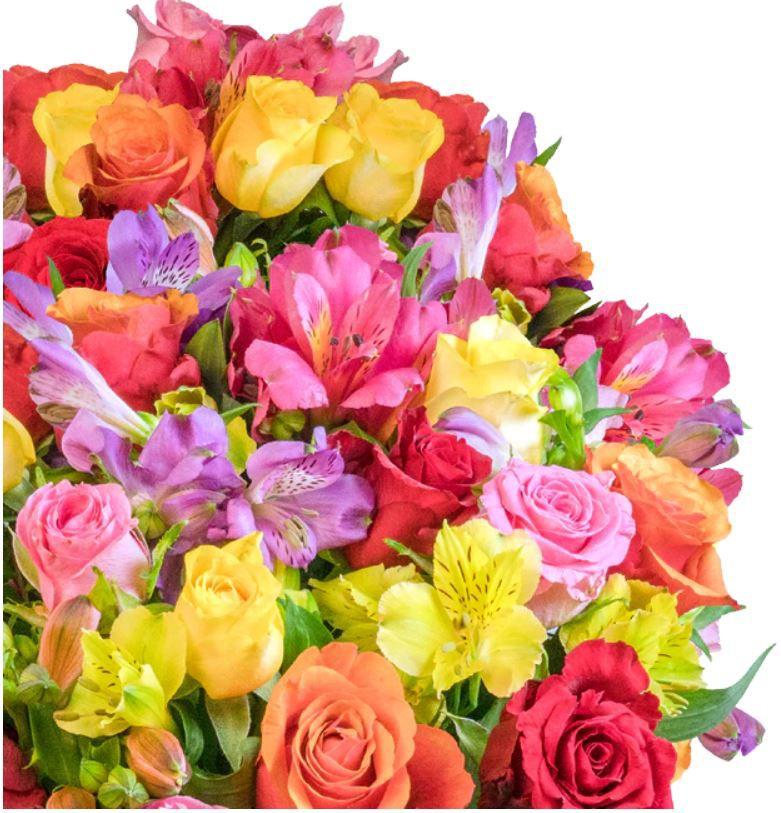 Rosenglück XXL Blumenstrauß mit über 120 Blüten für 25,98€