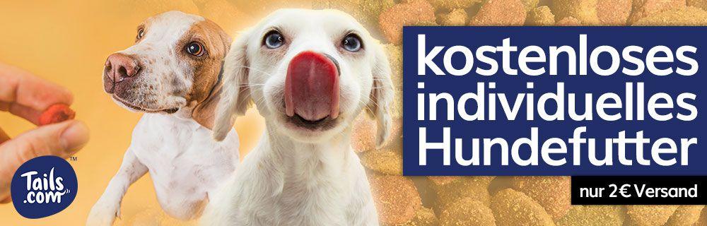 Individuelles Hundefutter gratis ausprobieren