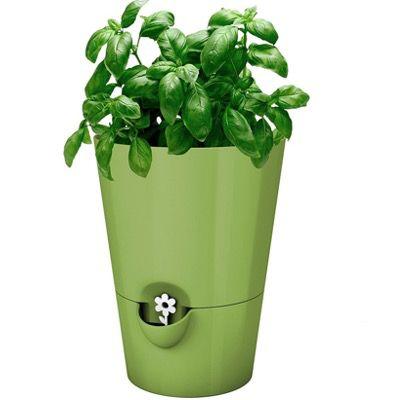 Emsa Kräutertopf mit Selbstbewässerung in Grün für 9,99€ (statt 13€) – Prime