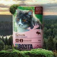 Bozita: Katzenfutter-Probe kostenlos erhalten