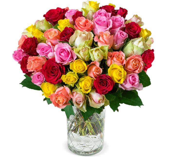 35 bunte Rosen Crazy in love für 25,98€