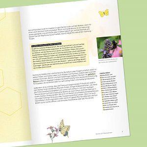 E Book Dein Bienegarten gratis sichern