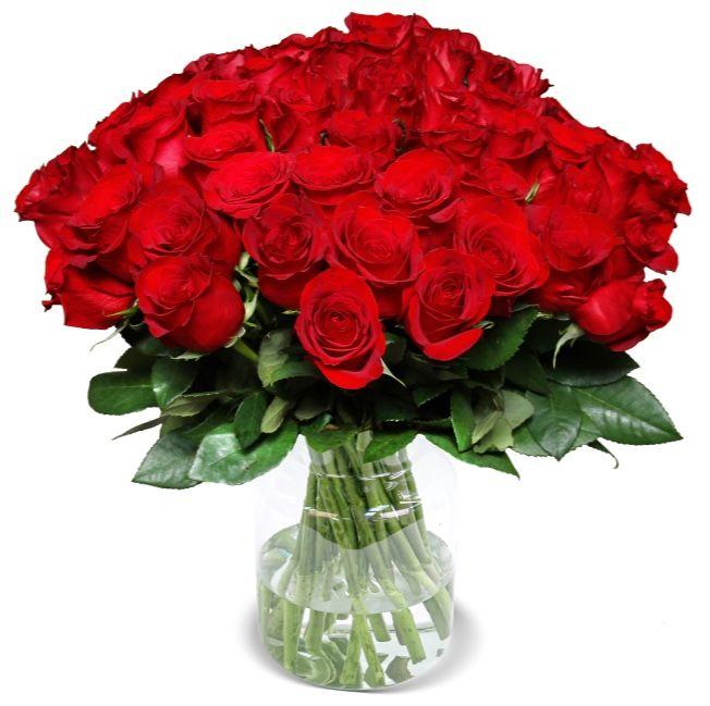 35 rote Rosen mit 50cm Länge für nur 25,98€