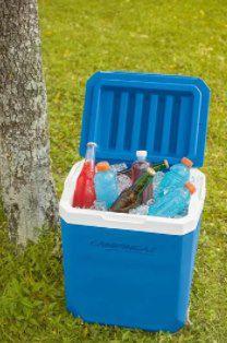 Campingaz Icetime Plus Kühlbox 30 Liter Volumen für 24,94€ (statt 33€)