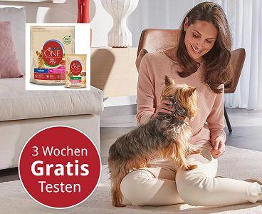Gratis: Purina ONE®MINI für Hunde 3 Wochen Testaktion