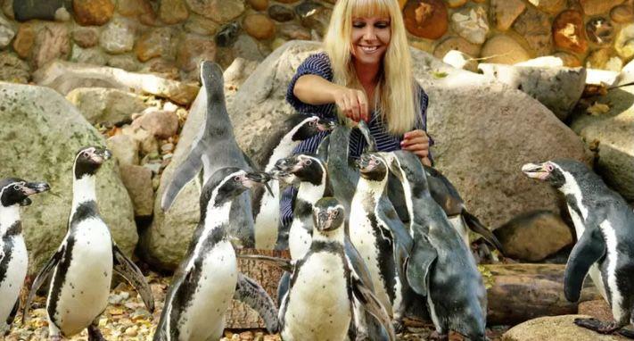 Tagesticket Weltvogelpark Walsrode für 17,50€(statt 24€)   Kinder bis 3 Jahren kostenloser Eintritt