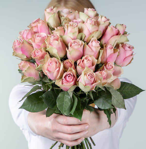 Blume2000: 30 Edelrosen für 9,99€ (statt 25€)