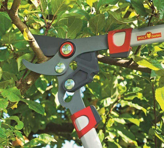Wolf Garten Power Cut RR 750 B Garten  & Astschere für 24,95€ (statt 39€)