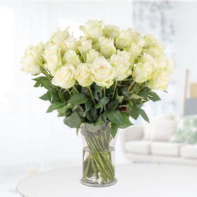 40 Weiße Rosen (40 cm) für 24,90€ (statt 38€)