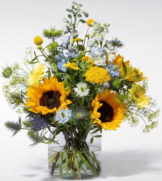 Blume2000   10€ Gutschein bei Bestellungen über 24,99€   Neukunde